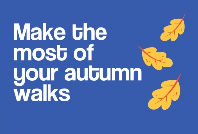 Image for Make the most of your autumn walks